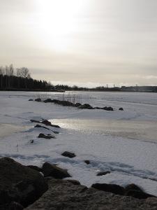 Vy över Varnumsviken